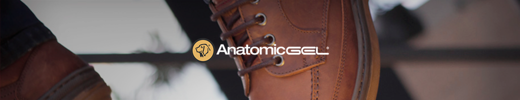 Anatomic Gel